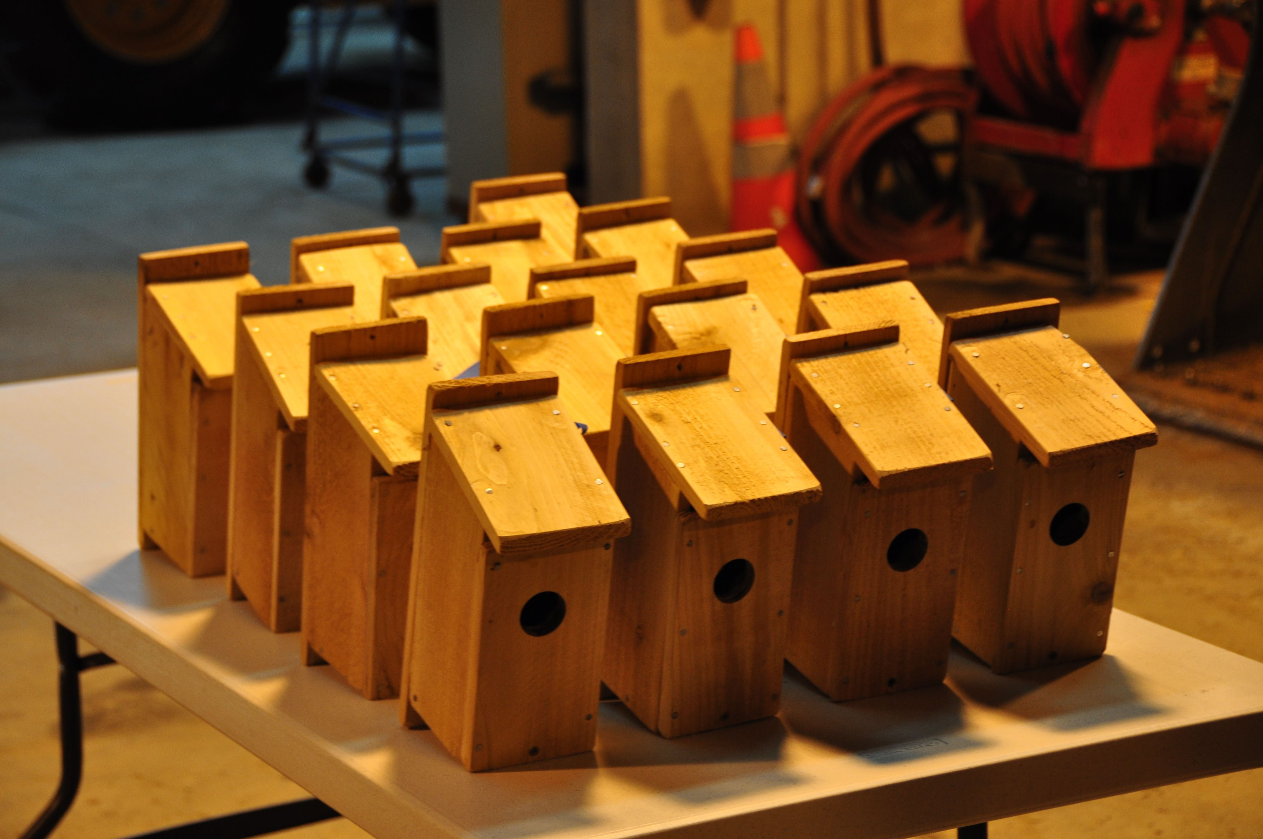 Group of bluebird houses